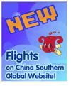 Image: China southern ad