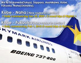 Image: Skymark Ad