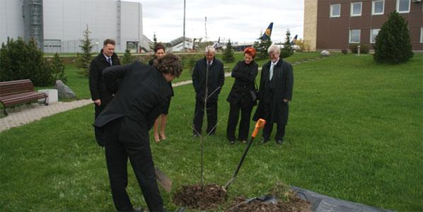 oak tree planted as a symbol Kaunas Airport and Ryanair base opening