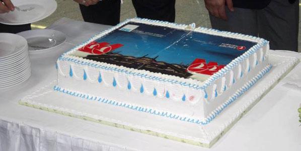 Turkish Airlines Istanbul Sabiha Gökçen base cake.