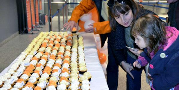 Cake of the Week Vote: Cake 8 - easyJet's Kraków to Basel