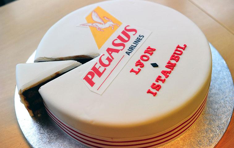 Pegasus Istanbul cake