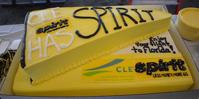 Spirit Airlines cake