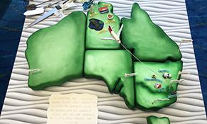 QantasLink's new Darwin-Canberra service wins Cake of the Week